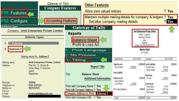 How to use multiple mailing details for company and ledgers in Tally ERP